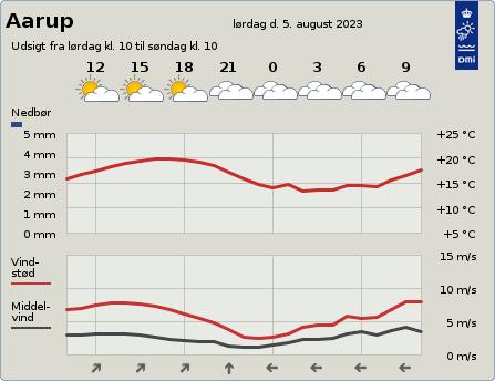 byvejr verdensvejr 5560 Aarup, Danmark